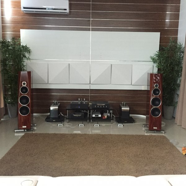 Contriva G2   What's Best Audio and Video Forum  The Best High End