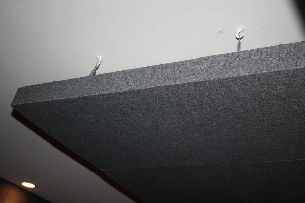 Ceiling Trap.jpg